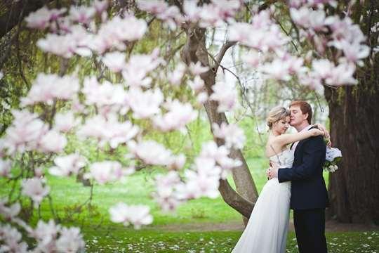 Свадьба весной: очарование пробуждения природы. Черпайте идеи для вдохновения!